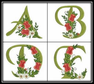 Tulip Alphabet